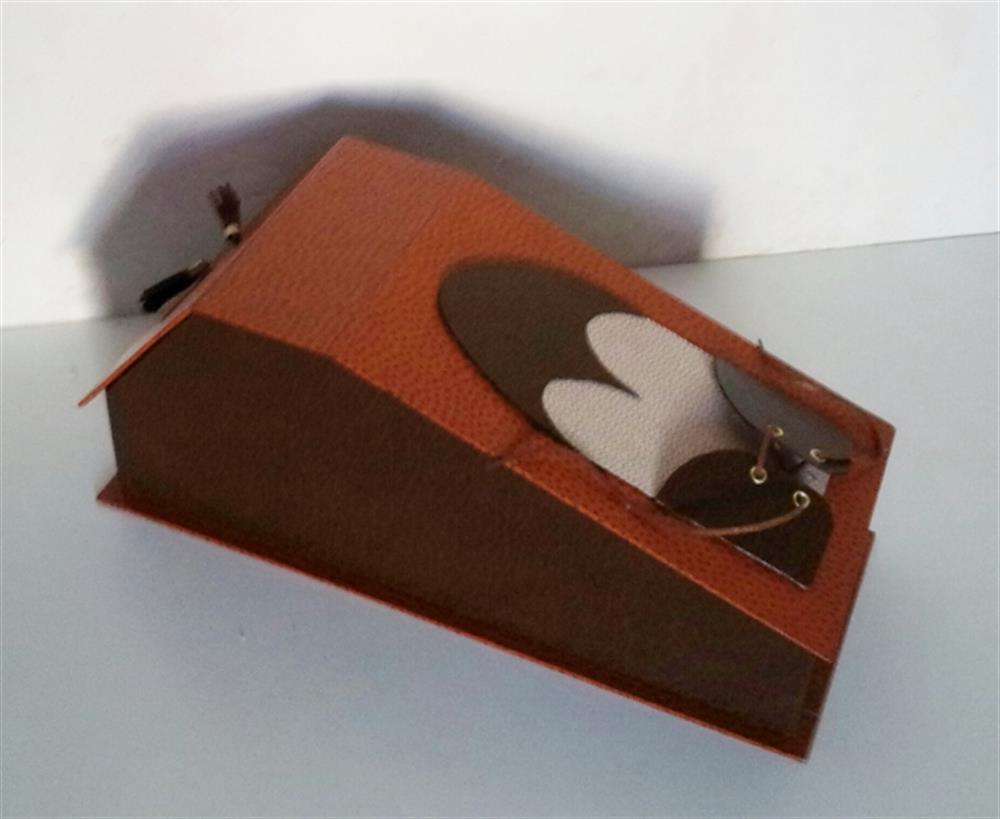 Boîte cirage